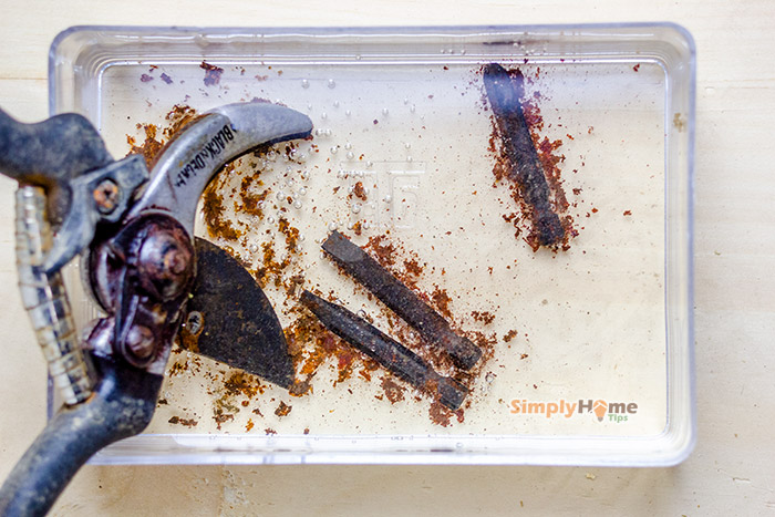 Removing rust from tools with vinegar