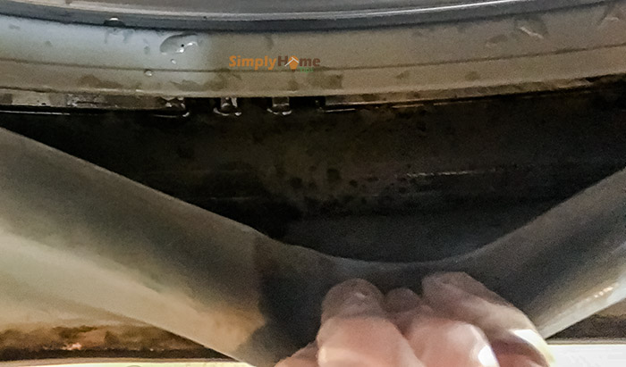 Mold grows on your washer