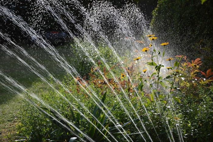 Auto Irrigation system